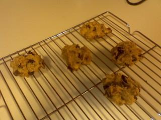 Ellie Krieger Kitchen Sink Cookies